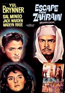 Os Fugitivos de Zahrain - Poster / Capa / Cartaz - Oficial 2