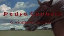 Pedro Canhoto, o Vingador Erótico - Poster / Capa / Cartaz - Oficial 1