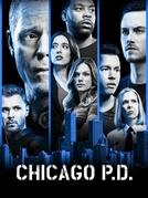 Chicago P.D. Distrito 21 (6ª Temporada) (Chicago P.D. (Season 6))