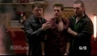 Graceland - First Trailer