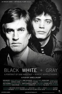 Preto, Branco e Cinza - Poster / Capa / Cartaz - Oficial 1