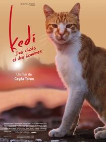 Gatos - Poster / Capa / Cartaz - Oficial 6