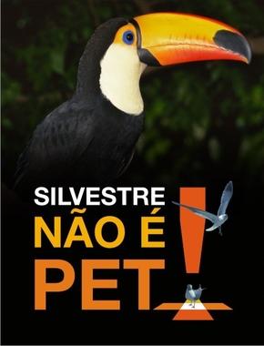 Resultado de imagem para Silvestre não é pet