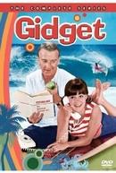 Gidget (1ª Temporada) (Gidget  (Season 1))