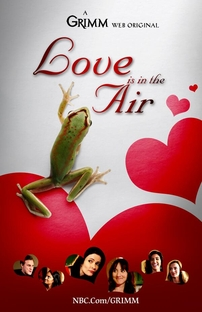 Grimm: Love Is in the Air - Poster / Capa / Cartaz - Oficial 1