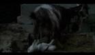 As quatro voltas (Le Quattro Volte 2010) - Trailer