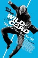 Carta Selvagem   (Wild Card)