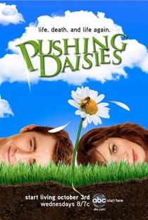 Pushing Daisies (1ª Temporada) - Poster / Capa / Cartaz - Oficial 1