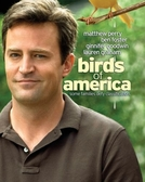 Leis da Vida (Birds of America)
