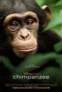 Chimpanzé - Poster / Capa / Cartaz - Oficial 1