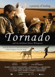 Tornado Indomável - Poster / Capa / Cartaz - Oficial 2