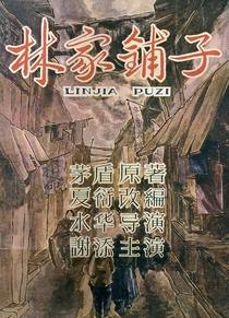 A Loja da Família Lin - Poster / Capa / Cartaz - Oficial 6