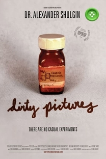 Dirty Pictures - Poster / Capa / Cartaz - Oficial 2