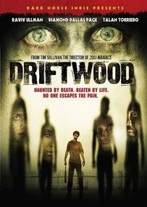 Driftwood - O Reformatório - Poster / Capa / Cartaz - Oficial 5