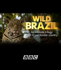 Brasil Selvagem - Poster / Capa / Cartaz - Oficial 1