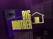 Big Brother 11 - Poster / Capa / Cartaz - Oficial 1