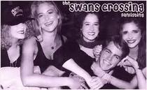 Swans Crossing - Poster / Capa / Cartaz - Oficial 1