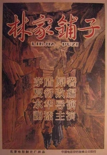 A Loja da Família Lin - Poster / Capa / Cartaz - Oficial 5