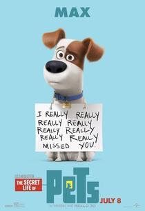 Pets: A Vida Secreta dos Bichos - Poster / Capa / Cartaz - Oficial 6