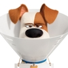 Confira o primeiro trailer de Pets - A Vida Secreta dos Bichos 2