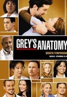 A Anatomia de Grey (5ª Temporada)