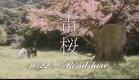Raiou 2010 [trailer]