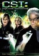 CSI: Investigação Criminal (12ª Temporada) (CSI: Crime Scene Investigation (Season 12))