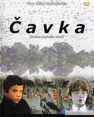 Cavka (Cavka)