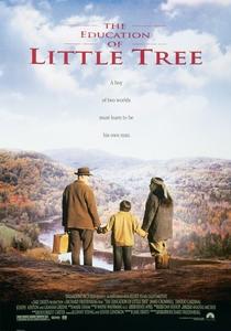 A Educação de Pequena Árvore - Poster / Capa / Cartaz - Oficial 4