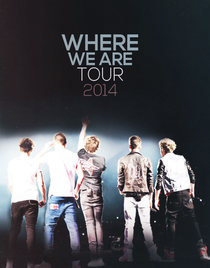One Direction: Where We Are - The Concert Film - Poster / Capa / Cartaz - Oficial 2