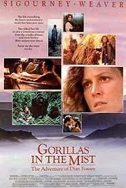 Nas Montanhas dos Gorilas - Poster / Capa / Cartaz - Oficial 3