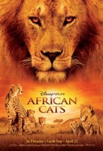 Reino dos Felinos - Poster / Capa / Cartaz - Oficial 1