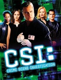 CSI: Investigação Criminal (2ª Temporada) - Poster / Capa / Cartaz - Oficial 1
