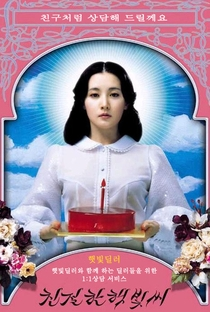 Lady Vingança - Poster / Capa / Cartaz - Oficial 9