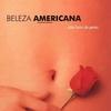 Cinema em análise: Beleza Americana