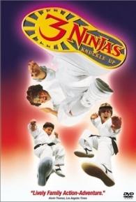 3 Ninjas em Apuros - Poster / Capa / Cartaz - Oficial 1