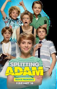 Adam e Seus Clones - Poster / Capa / Cartaz - Oficial 2