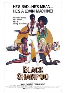 Black Shampoo - Poster / Capa / Cartaz - Oficial 1