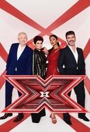 The X Factor UK (13ª Temporada) (The X Factor UK (13ª Temporada))