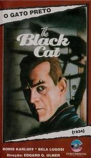 O Gato Preto - Poster / Capa / Cartaz - Oficial 3