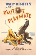 Pluto's Playmate (Pluto's Playmate)