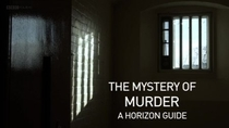 Horizon Special - The mystery of murder - Poster / Capa / Cartaz - Oficial 1