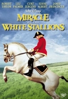 Ao Passar do Vendaval (Miracle of the White Stallions)