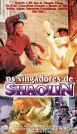 Os Vingadores de Shaolin (Shao Lin ying xiong zhi Feng Shi-Yu Hong Zhi-Guan)