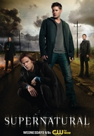 Sobrenatural (8ª Temporada) (Supernatural (Season 8))