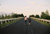 Caminho do Bosque - Poster / Capa / Cartaz - Oficial 2