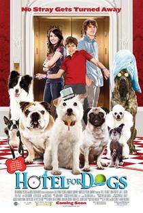 Um Hotel Bom Pra Cachorro - Poster / Capa / Cartaz - Oficial 6