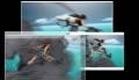 Black  Lagoon trailer