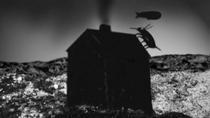 Bug Crawls - Poster / Capa / Cartaz - Oficial 1