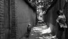 Kiarostami - Nan va Koutcheh [Le Pain et la Rue] (1970)
